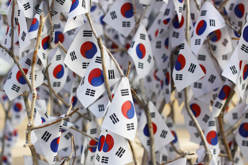 The tree with Korean flags royalty free stock image
