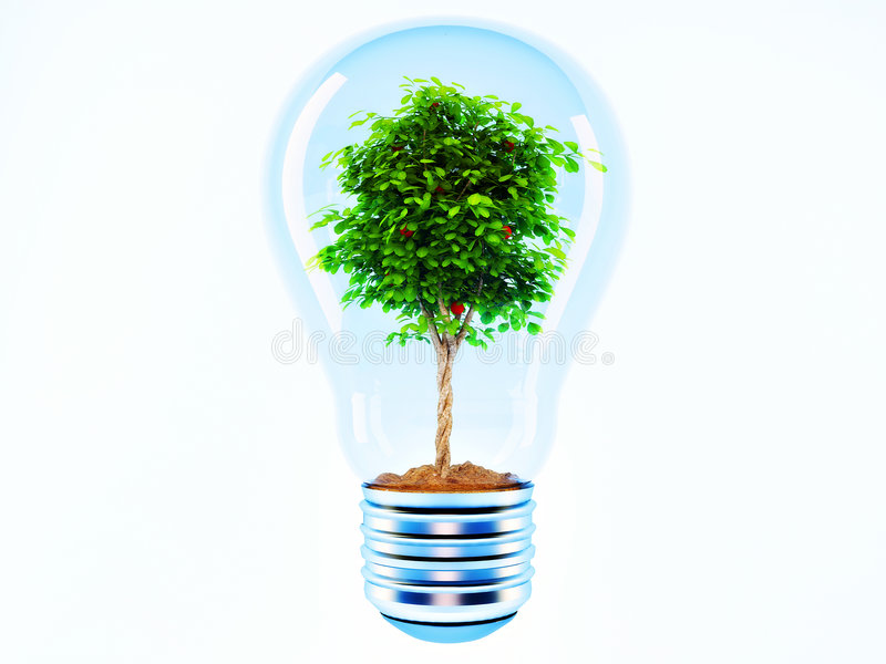 Tree in a lamp. On white background