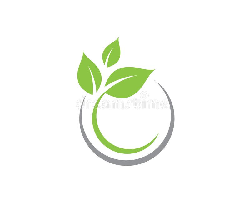 Tree Leaf Vector Icon Template Stock Vector - Illustration of ...