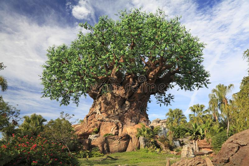 Tree of Life in Disney Animal Kingdom Theme Park, Orlando, Florida. USA royalty free stock images