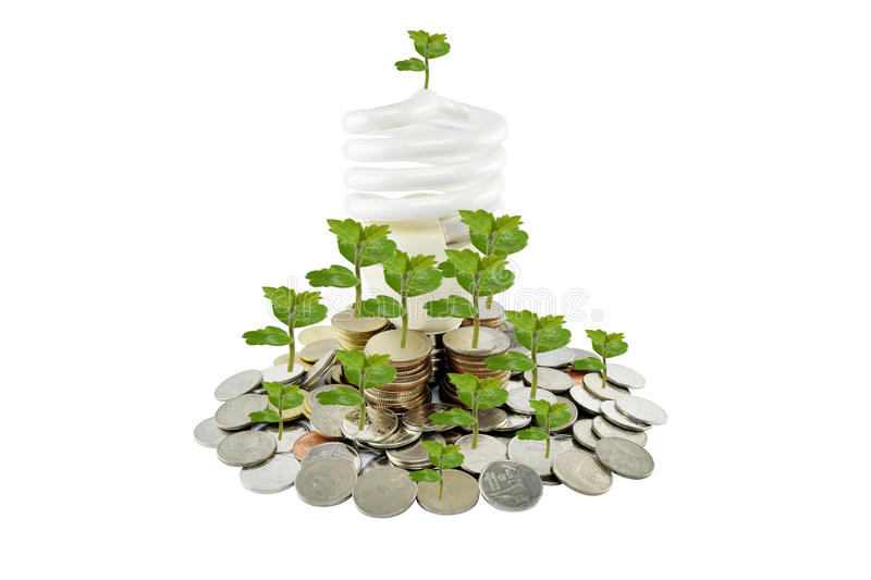 Tree and light bulb on coins heap (energy savings concept) on white background. With clipping paths stock photos