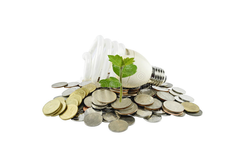 Tree and light bulb on coins heap (energy savings concept) on white background. With clipping paths stock images