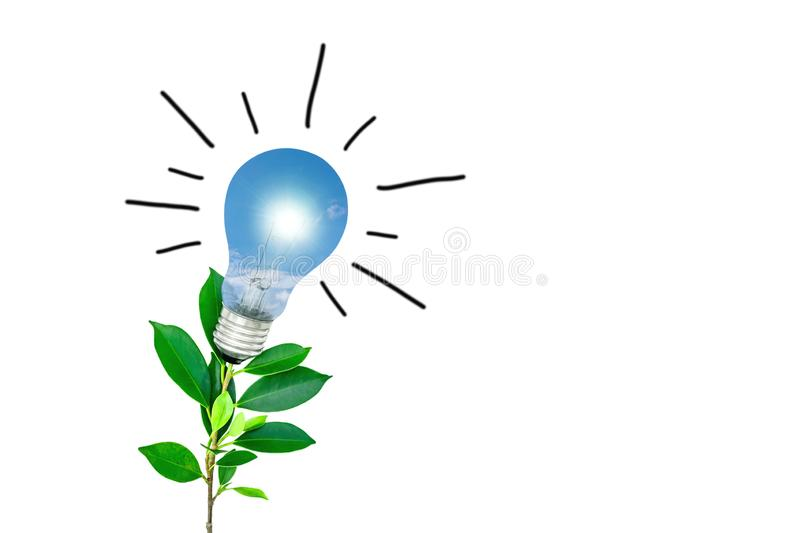 Tree with light bulbs on a white background Energy saving concept. Electric, protection, ideas, equipment, pollution, economical, energy-saving, grown stock images