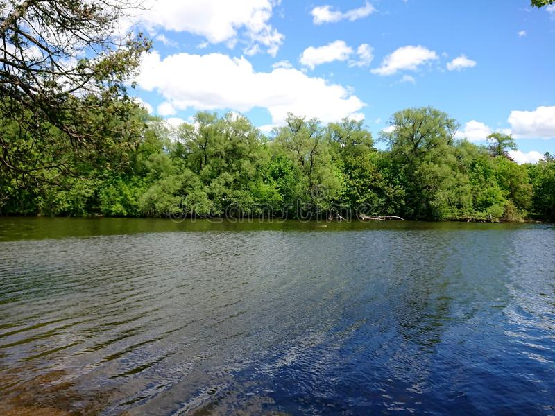 Tree line and Water rippling Speed River Guelph, Ontario Canada Wellington County natural Canadian Beauty royalty free stock image