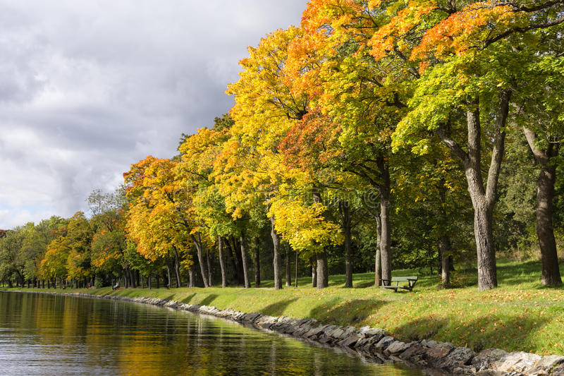 Tree lined channel in the fall royalty free stock photos