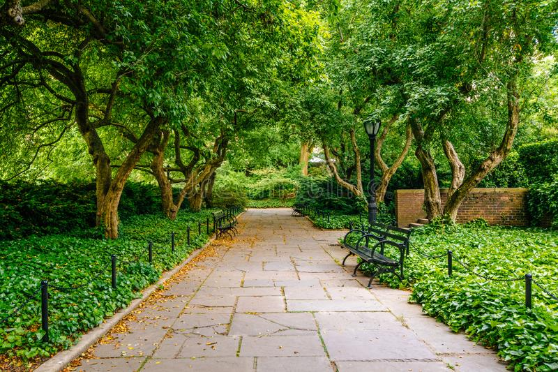 Tree-lined walkway at the Conservatory Garden, in Central Park, Manhattan, New York City stock photos