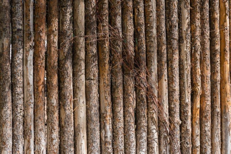 Tree log post fence royalty free stock image