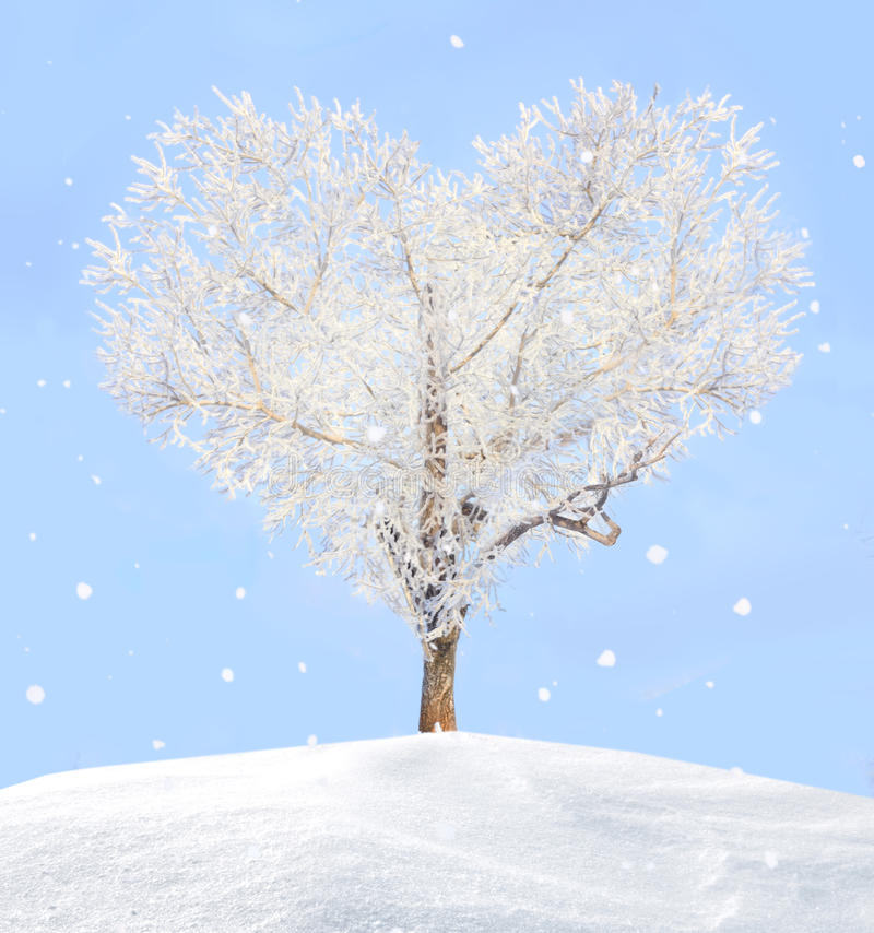 Tree of love royalty free stock images