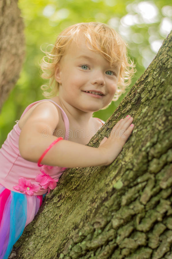 Tree Loving royalty free stock photos