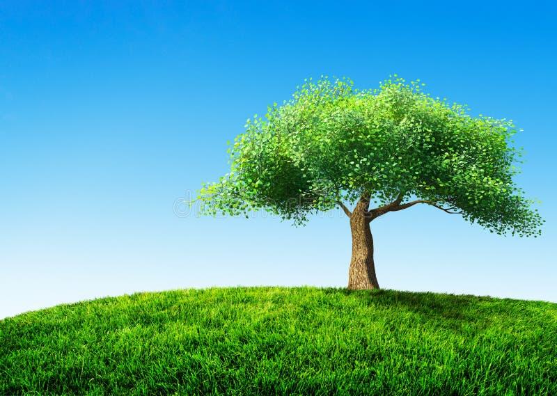 Tree med gräs royaltyfri illustrationer