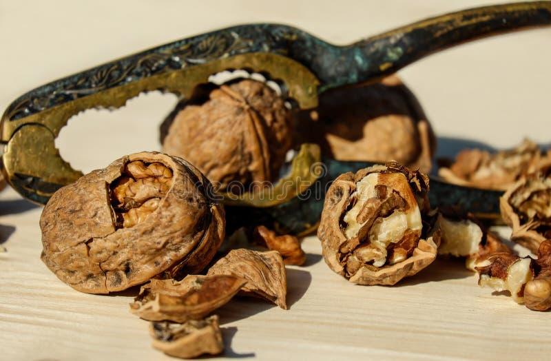 Tree Nuts, Walnut, Nut, Nuts & Seeds stock photos