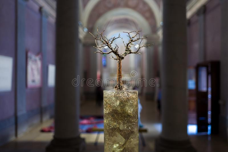Tree object in Milan Cathedral Museum royalty free stock photography