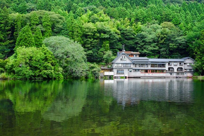 Tree och lake royaltyfria foton