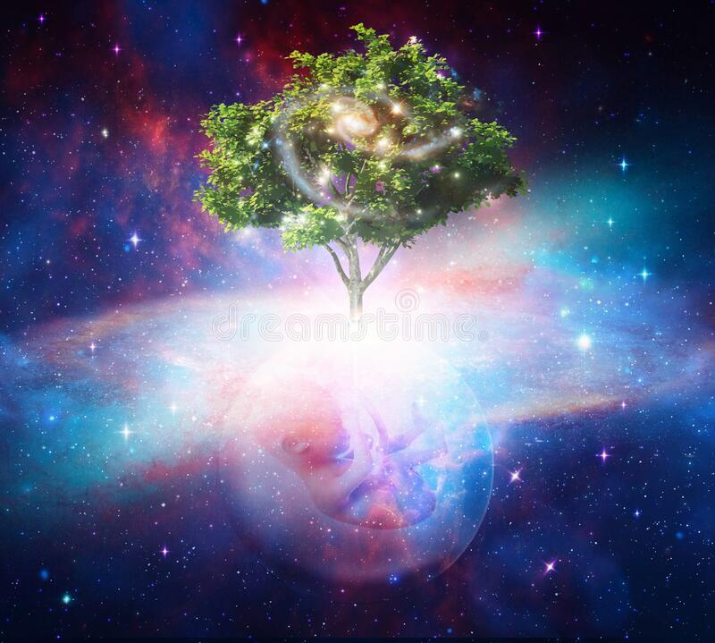 Free Tree Of Life, Cosmic Womb, Creation, Portal Universal Love, Life Concept Royalty Free Stock Images - 178744669