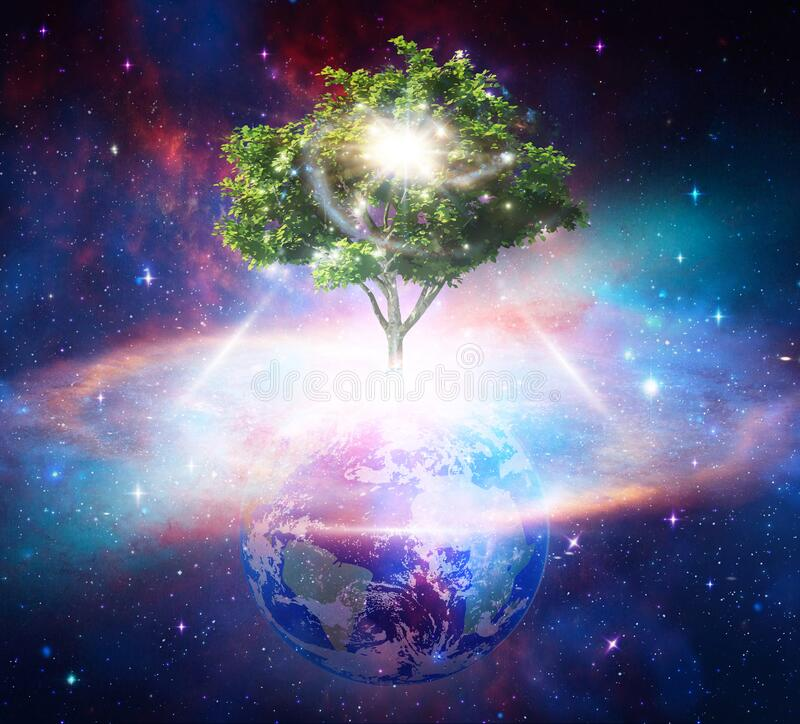 Free Tree Of Life, Cosmic Womb, Earth Creation, Portal Universal Love, Life, Healing Energyconcept Royalty Free Stock Image - 185504686