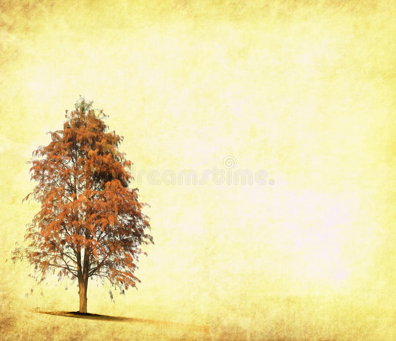 Download Tree with old paper stock illustration. Image of green - 17900544