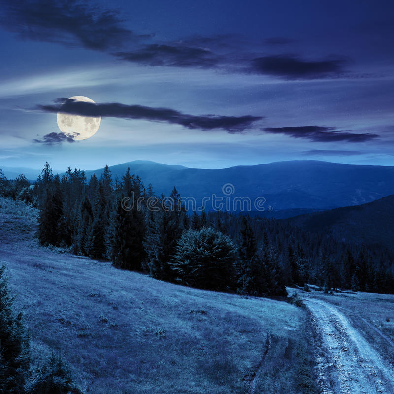 Free Tree On Hillside Path Through Meadowon Hillside At Night Royalty Free Stock Photography - 47706607