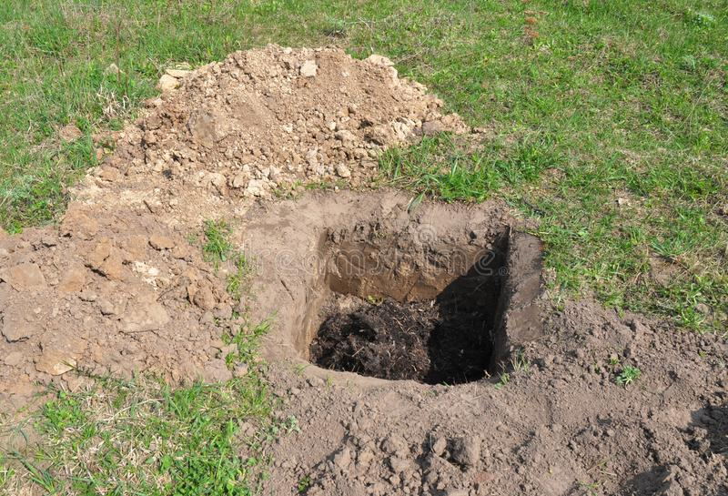 Tree organic fertilization Compost in digging hole.. Organic fertilizer for tree planting. Tutorial stock photography
