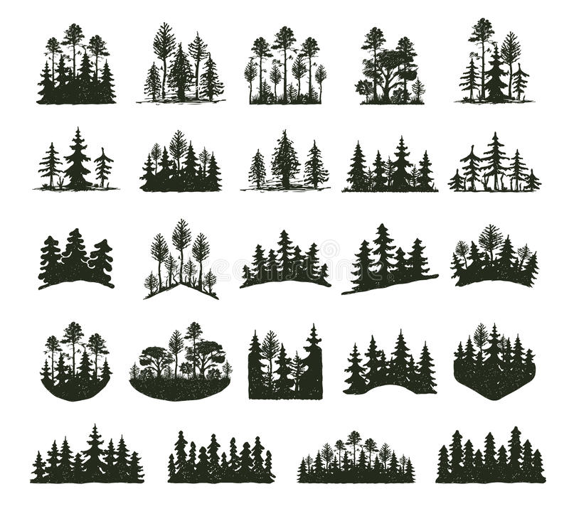 Tree outdoor travel black silhouette coniferous natural badges, tops pine spruce branch cedar and plant leaf abstract vector illustration