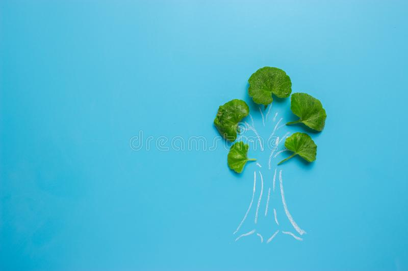 tree painted on blue background stock photo