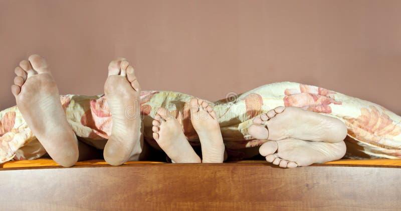 Download Tree pair of legs stock photo. Image of heel, fingers - 39285264