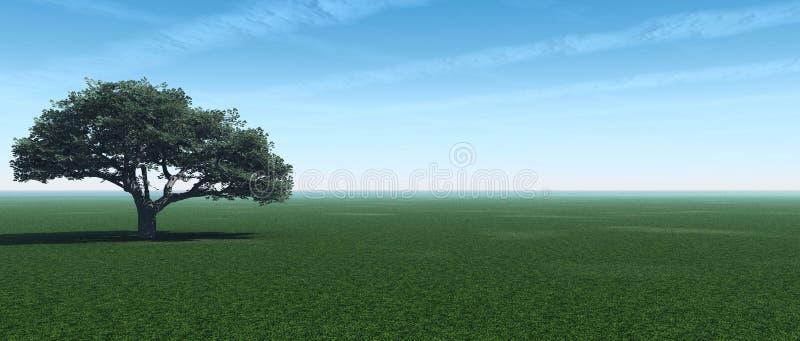 Tree_panorama royalty illustrazione gratis