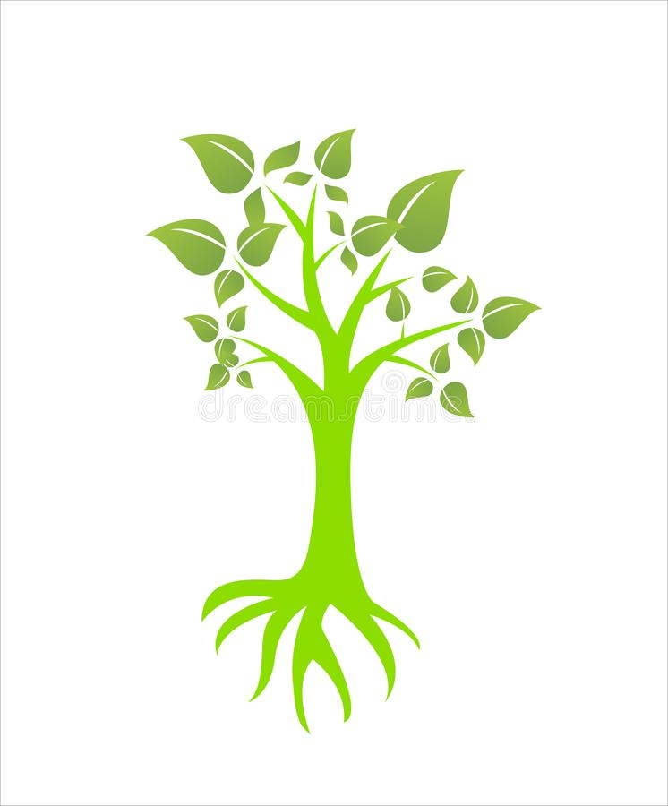 Tree plant leave nature environment icon. Familytree vector illustrations green future white background icon symbol royalty free illustration