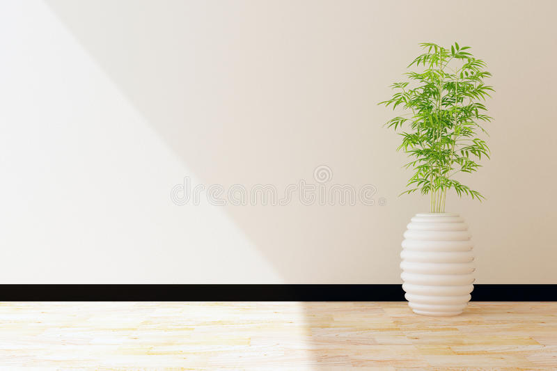 Tree pot and white wall interior decorated stock illustration