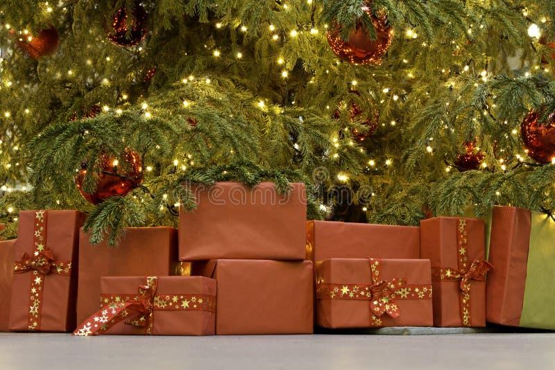 Tree presents stock photos
