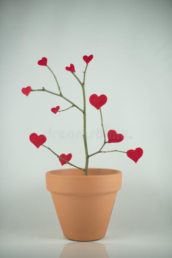Tree of red hearts royalty free stock photo