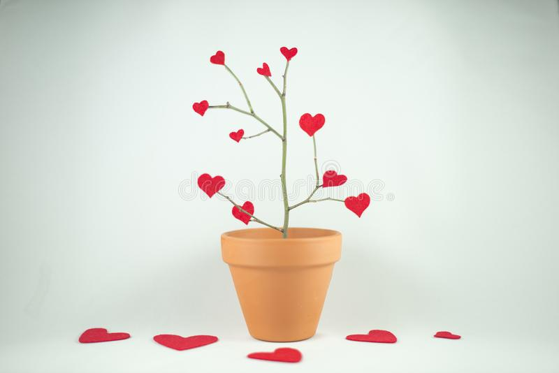 Tree of red hearts, Valentine´s Day. stock image