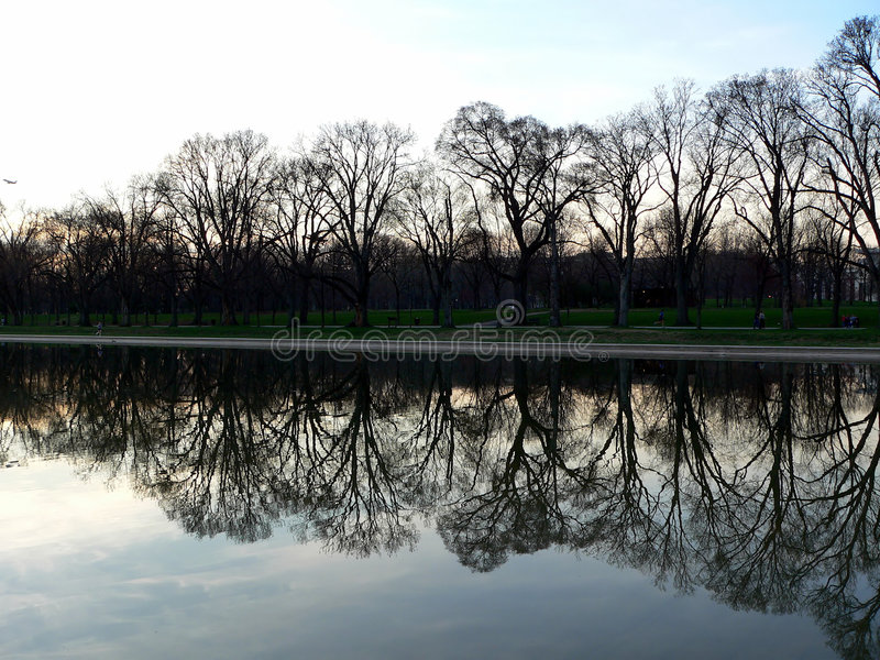 Download Tree And Reflecting Pool At Lincoln Memorial In Washington DC Royalty Free Stock Photography - Image: 190877
