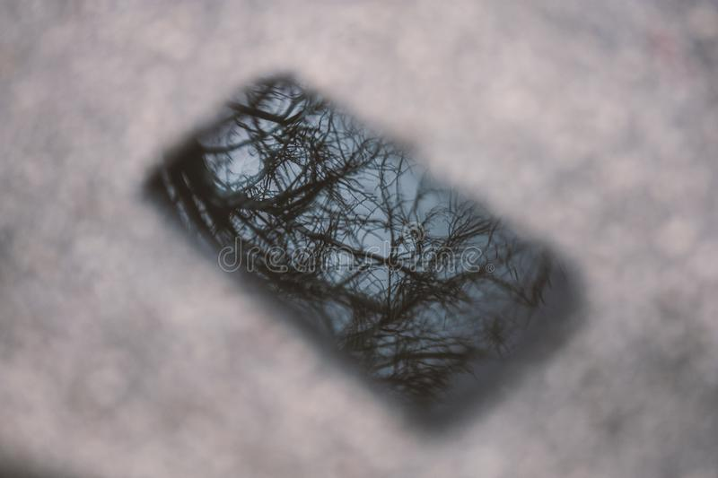 Reflective in the smartphone surface. Tree reflective in the smartphone surface, shadow of the tree and sky royalty free stock photos