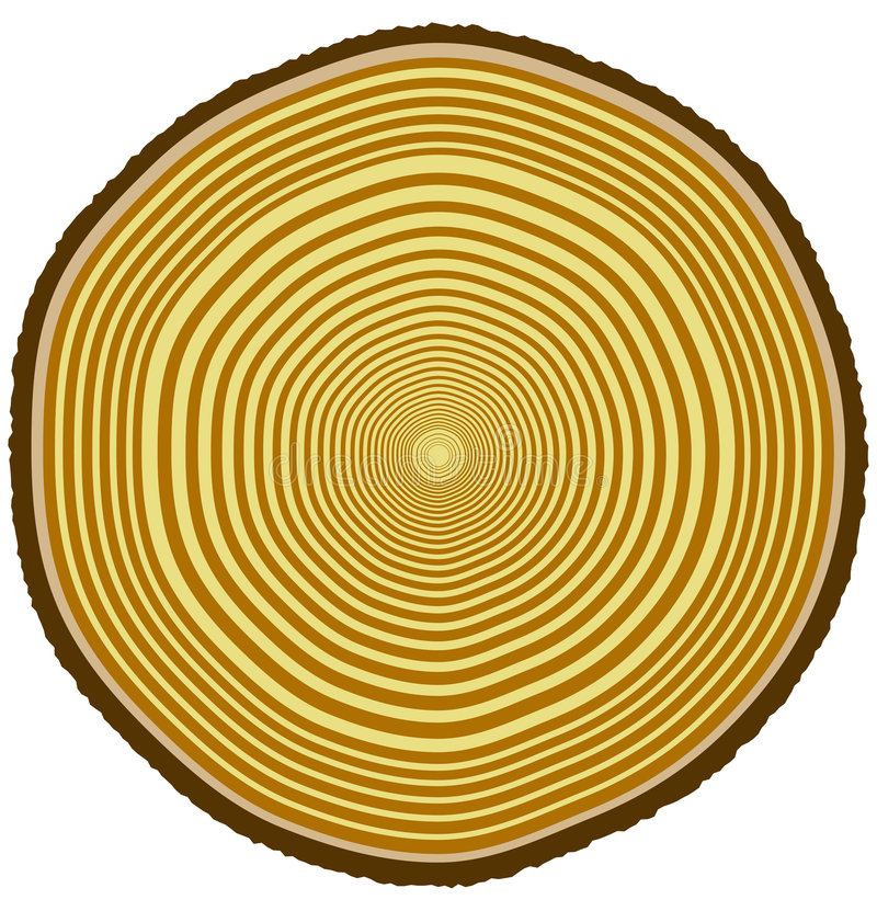 Download Tree rings stock vector. Image of dendrology, brown, timber - 2908759