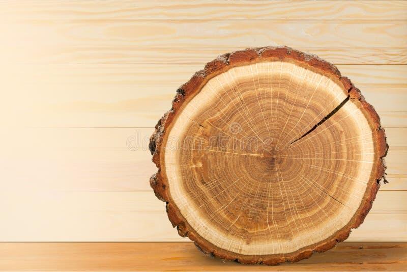Tree Rings royalty free stock photo