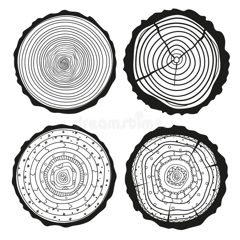Tree rings. Set of cross section stock image
