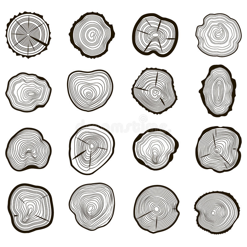 Tree Rings Set Saw Cut Trunk. Vector. Tree Rings Set Saw Cut Trunk with Cracks and Black Lines Wooden Texture. Vector illustration stock illustration