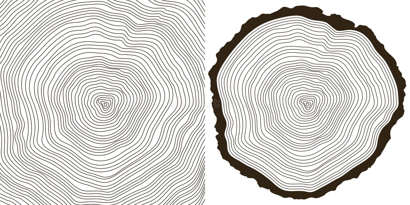 Tree rings stock illustration