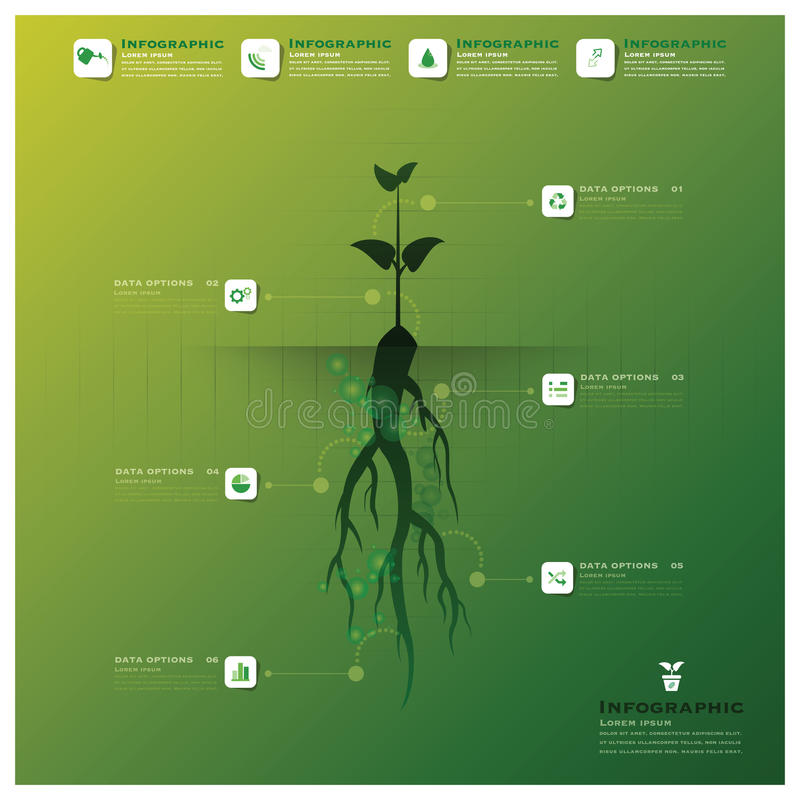 Tree And Root Infographic Design Template. Tree And Root Infographic Background Design Template royalty free illustration