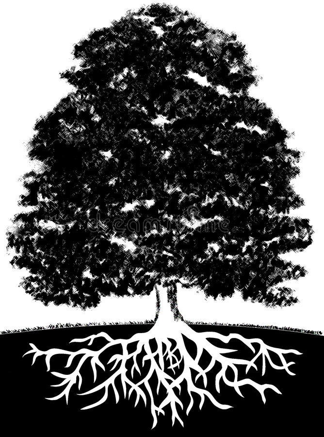 Tree and Roots vector illustration