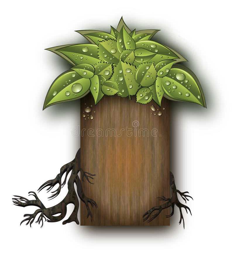 Tree roots Bio wood. Tree roots Bio garden leaves board background wood royalty free illustration