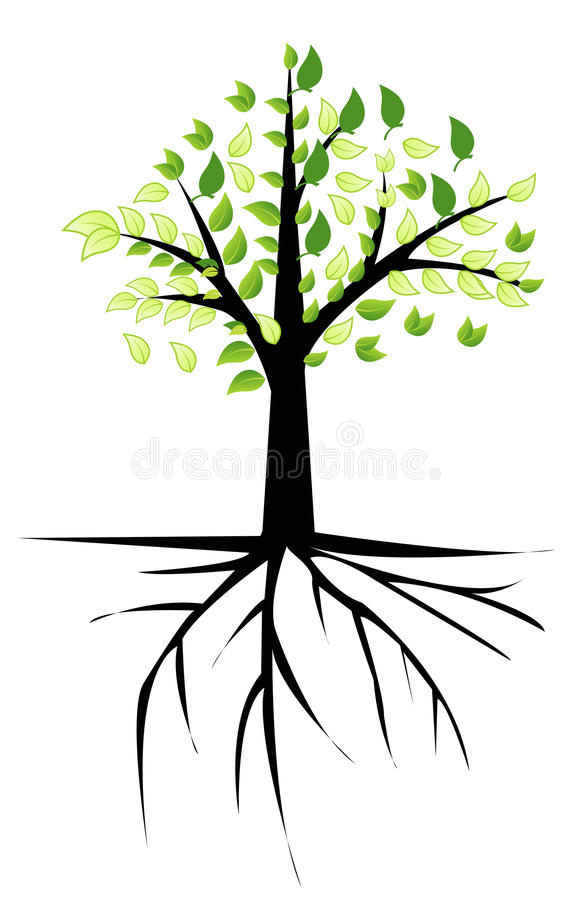 Tree with roots royalty free illustration