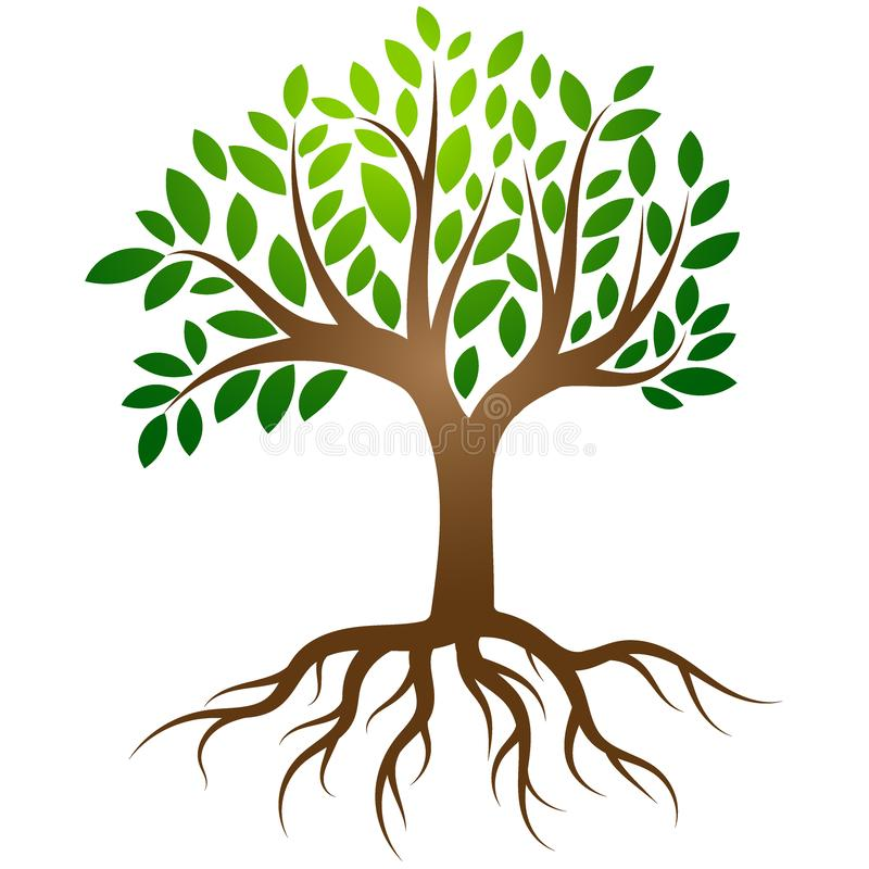 Tree roots logo vector royalty free illustration