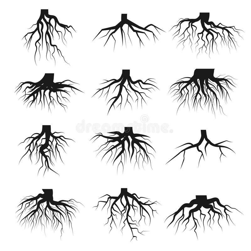 Tree roots set royalty free illustration