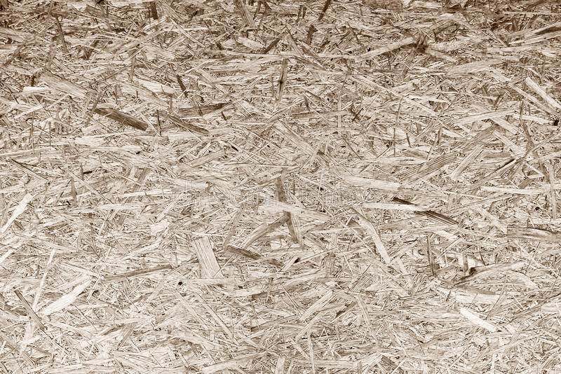 The tree sawdust texture royalty free stock photos