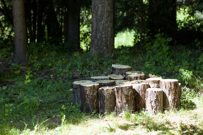 Old wood sawn into several parts. The tree is sawn into several pieces and folded into a pile royalty free stock photo