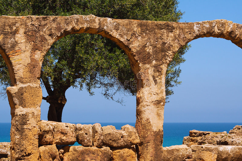 Tree and sea through the arches stock images