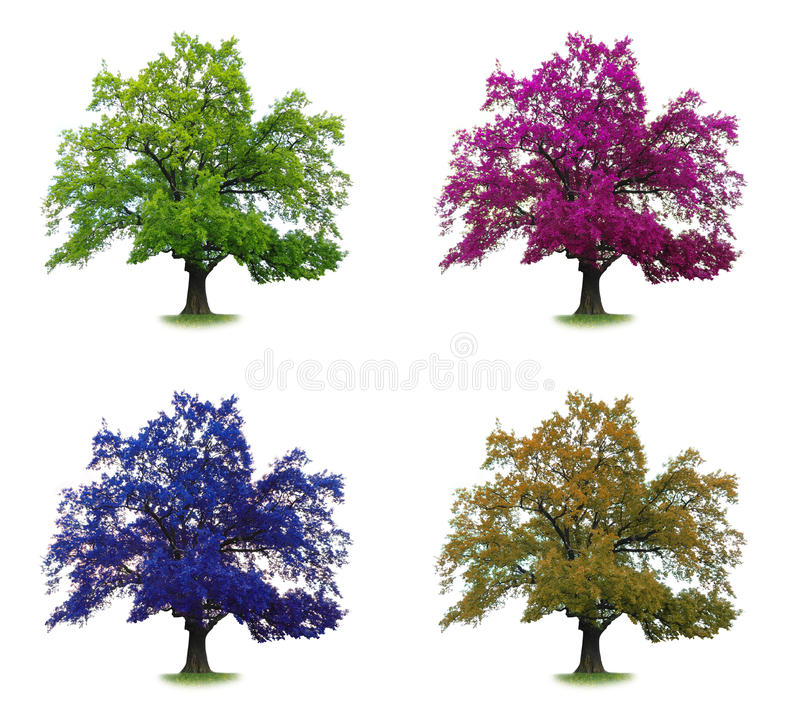 Tree set in colors isolated stock images