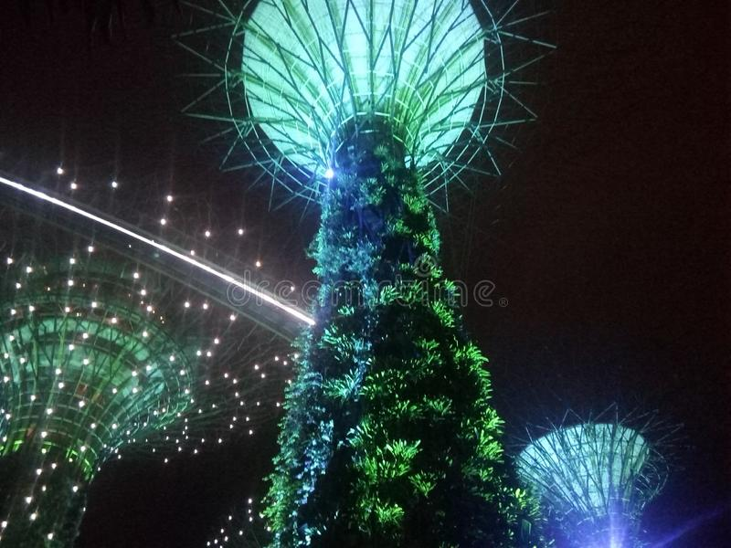 Tree show Singapore. The tree show captured in Singapore royalty free stock images