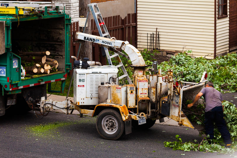 Tree Shredder Machine in action and workers pushing Branches int stock photography